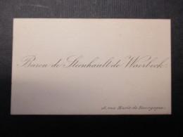CARTE DE VISITE BELGIQUE (V1618) BARON De Steenhault De Waerbeck (2 Vues) Rue Marie De Bourgogne, 28 - Cartes De Visite