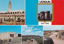 VERDUN MULTIVUES (DIL265) - Monuments Aux Morts