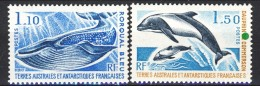 TAAF 1977 Serie N. 64-65 MNH Catalogo € 15,60 - Terre Australi E Antartiche Francesi (TAAF)
