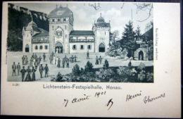 LICHTENSTEIN HONAU   FESTSPIELHALLE  ANIMATION - Liechtenstein