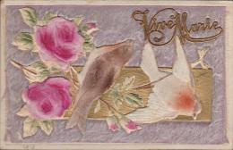 Kaart Bekleed Met Stof  Vogels  Carte  Revêtu De La Poussière Oiseau  14 X 9 Cm - Fête Des Mères
