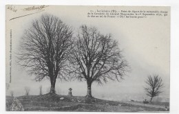 (RECTO / VERSO) LE CALVAIRE D' ILLY EN 1904 - N° 21 - BEAU CACHET - CPA - France