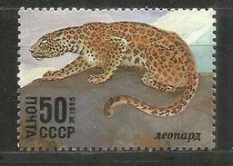 Le Léopard De L'Amour Et De Sibérie, Un Timbre Neuf ** - Roofkatten