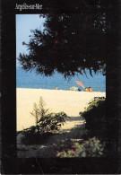 66-ARGELES-SUR-MER-N°113-C/0055 - Argeles Sur Mer
