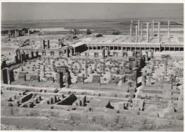 Iran - Persepolis - Photo 55x150mm - Places