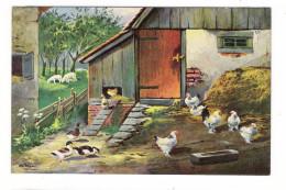 OISEAUX ET VOLATILES DE BASSE-COUR + FERME  /  POULES + COQ + CANARD + BREBIS ( Illustrateur  :  M. SCHÖNIAN , München ) - Pájaros