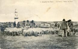 Tarn - Angles - Le Batut Scène De Foire - Statue Vierge - Moutons - Albi