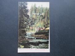 AK 1917 Gruss Aus Dem Schwarzwald. Partie Im Gauchachtal I. Seltene Karte?! Kleiner Bachlauf - Gruss Aus.../ Grüsse Aus...