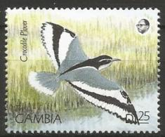 Gambia - MNH - Family PLOVERS - Egyptian Plover ( Pluvianus Aegyptius ) - Birds