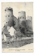 BOURBON L'ARCHAMBAULT  (cpa 03)  Le Château -   - L 1 - Bourbon L'Archambault