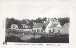 56 GESTEL Beurrerie De Kerloïc - France