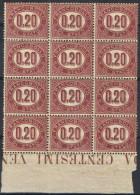 D40) V.E.II SERVIZIO 1875 0.20 Lire IN BLOCCO DA 12 BORDO DI FOGLIO - Servizi