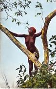 L'Afrique En Couleur - La Joie De Vivre - Sénégal