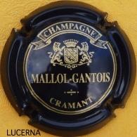 MALLOL GANTOIS N° 3 : Noir, écriture Bronze - Champagne