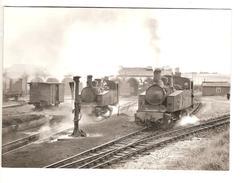 DEPOT DE CARHAIX  17.6.1963 PHOTO JL ROCHAIX 557.1 RB - Trains