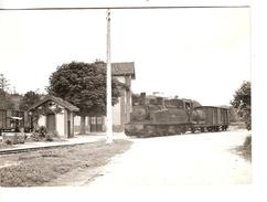 TRAIN POUR GUINGAMP MANOEUVRANT SUR LA VOIE DE DEBORD DE LOCHRIST LOCARN 24.6.1963 PHOTO JL ROCHAIX 557.12 RB - Trains