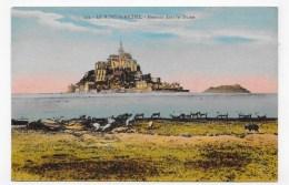LE MONT SAINT MICHEL - N° 243 - MOUTONS DANS LES DUNES - CPA NON VOYAGEE - Le Mont Saint Michel