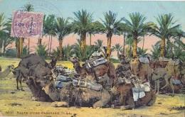 POSTE DE L OUED AGHBAL SUR TIMBRE PROTECTORAT CACHET COMMANDANT D ARMES  SUR CP - Maroc (1891-1956)