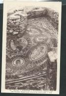 Bône Hippone : Propriété Chevillot Les Muses Mosaïque Punique Antique   - Obf0105 - Annaba (Bône)