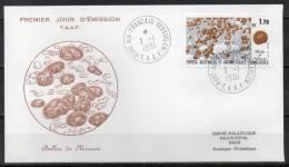 TAAF - Port Aux Français - Kerguelen - FDC - 1991 - Yvert N° 156 - FDC