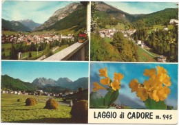 T387 Laggio Di Cadore (Belluno) - Panorama Vedute Multipla / Non Viaggiata - Italia
