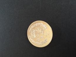Napoleon 1er 1769/1821 Empereur Histoire De France Très Belle Pièce Militaria Militaire Militaires Guerre Jeton Médaille - France