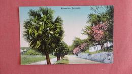 Bermuda---Palmettos   Ref 2387 - Bermudes