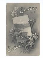 Souvenir De La Suisse Territet Montreux 1913 - VD Vaud