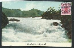 Arateatea Rapids     - Obf0181 - Nueva Zelanda