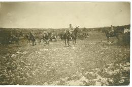 Carte-Photo  Guerre 14-18 WW1 - Régiment De Cavallerie Région Meuse Argonne à Identifier Front Tranchée - Guerre 1914-18
