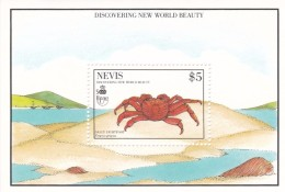 Nevis Hb 31 - St.Kitts Y Nevis ( 1983-...)