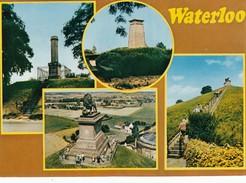 Belgium Waterloo Le Monument Du Lieutenant Colonel Gordon Le Lion - BELGIQUE - Non Circulée - Waterloo