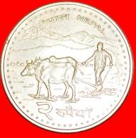 § EVEREST, BULLS: NEPAL ★ 2 RUPEES 2063 (2006)! LOW START★ NO RESERVE! Birendra (1971-2001) - Népal