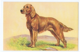 M. GEAR - DOG - ART DECO POSTCARD 1940s - EDIT RHODANIA - N. 218 - Honden