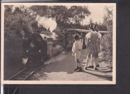 Reichsgartenschau Stuttgart 1939  Kleinbahn , Sonderstempel - Allemagne