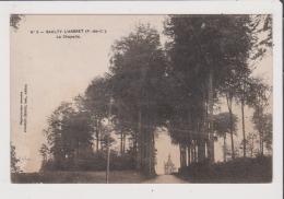 CPA - SAULTY L'ARBRET - La Chapelle - Sonstige Gemeinden