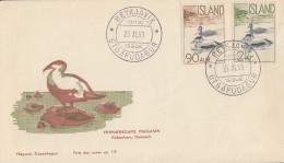 Enveloppe   FDC  1er  Jour     ISLANDE    Canards  Eiders   1959 - FDC
