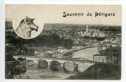 Périgueux Souvenir Du Périgord (cochon) - Périgueux