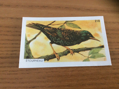 "Chromo Francorusse N°210 ""ÉTOURNEAU"" (oiseau) - Chromos"