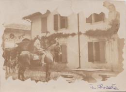 FOTO-CARTOLINA ORIGINALE D'EPOCA - F/P B/N  (260315) - Pin-ups
