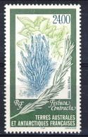 TAAF 1999 N. 244 F. 24 MNH Catalogo € 12 - Terre Australi E Antartiche Francesi (TAAF)