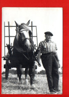 Attelage Agriculture - Culture (dimensions 15 X 10.5 Cm) (non écrite) - Attelages