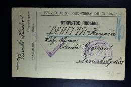 Russia 1917 Prisoner Of War Card  / Service Des Prisonniers De Geurre  Russian Censor - Covers & Documents