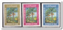 Irak 1965, Postfris MNH, Trees - Irak