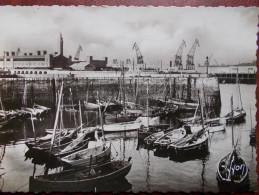 50 - CHERBOURG - Le Petit Port. (Grues Portuaires) CPSM - Cherbourg