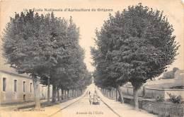 78 - LES YVELINES - Grignon - Avenue De L'école - Défaut ( Tâche ) - Grignon