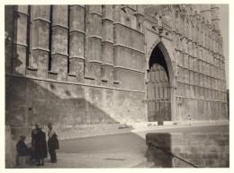 611cci   Espagne Palma De Mallorca Trés Grande Photo (23cm X 17cm) La Cathedrale En Sept. 1955 - Non Classés