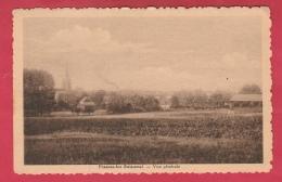 Frasnes-lez-Buissenal - Vue Générale ... De La Localité - 1943  (  Voir Verso ) - Frasnes-lez-Anvaing