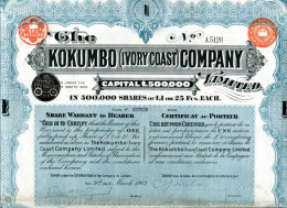 Côte D'Ivoire: The KOKUMBO (Ivory Coast) COMPANY Limited - Afrique