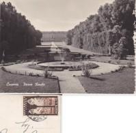 ITALIA 1954 SIENA SU CARTOLINA DA CASERTA - PARCO DELLA REGGIA - 6. 1946-.. Repubblica